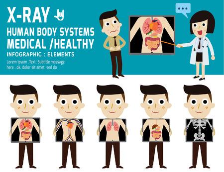 corpo umano: schermo per raggi X che mostra gli organi interni e sistemi del corpo skeleton.human, concetto digestive.health. element.vector infografica disegno del fumetto piatta. illustration.on sfondo bianco e blu.