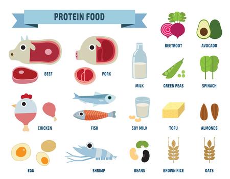 단백질 음식은 흰색 backgroundflat 디자인 귀여운 그림 iconsisolated.
