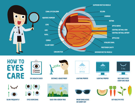 medical person: how to health care eyes. health care concept. infographic element. vector flat icons design. brochure poster banner illustration. isolated on white and blue background. oculist woman character.