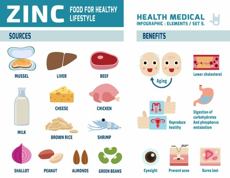 eat healthy: zinc.infographic elements.health care concept.flat cute cartoon design illustration.isolated on white background.