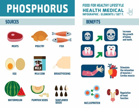 phosphorus.infographic soins de elements.health concept.flat conception mignonne de bande dessinée illustration.isolated sur fond blanc.
