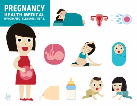 pregnant full body.infographic elements.health care concept.flat cute cartoon design illustration.isolated on white background.