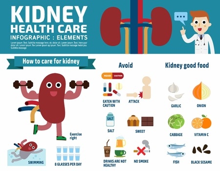 Kidney infographic elements flat header banner design illustration.Kidney cartoon mascot characterand icon isolated on white background.Brochure template cover for magazine or website Stock Illustratie
