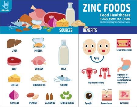 아연. 소스 및 혜택입니다. 의료 건강 관리 개념입니다. 음식 건강 한 infographic 요소입니다. 영양소와 미네랄 벡터 플랫 아이콘 디자인 일러스트 레이션 일러스트