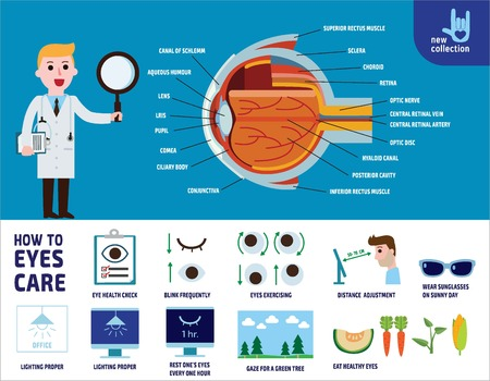 how to health care eyes. infographic illustration.banner. flyer. brochure. template. layout.vector flat icons design.healthcare concept. Vettoriali