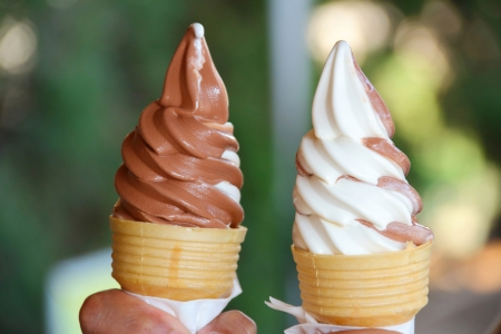 chocolate ice cream: Shore ice cream, chocolate and cream