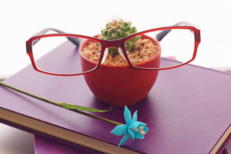 Glasses purple  book and cactus put on the notebook photo