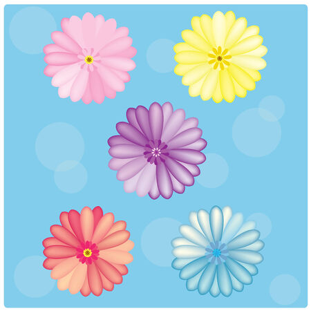 vector Gerbera colorful set on the blue background