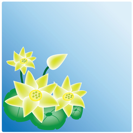 vector water lily on the blue background Vector