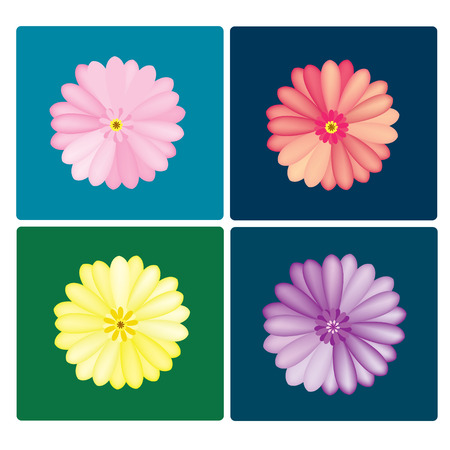 vector Gerbera colorful set on the colorful background Vector