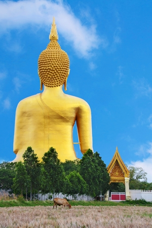 doctrine: Buddha statue wat muang in Ang Thong,Thailand
