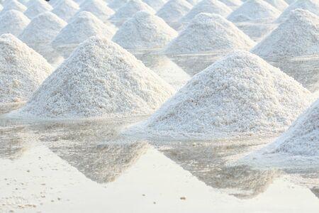 salar: Pila de sal en granja de la sal