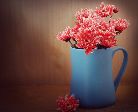 still life flowers: still life flowers, Chrysanthemum in blue vase Stock Photo
