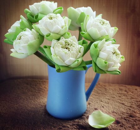 still life flowers: still life flowers, White water lilly in vase Stock Photo