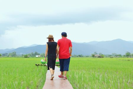 swain: Two lovers walking in the rice field and holding themselves by hands