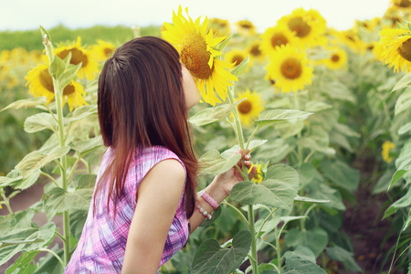 smelling: Asian woman smelling sunflower.