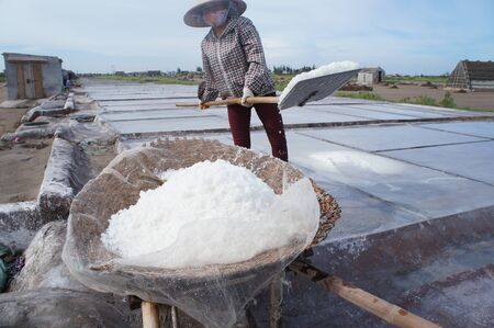 Salt production in the field