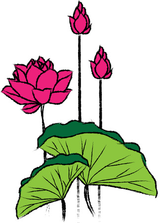 lotus leaf in viet nam