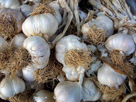 collectives: garlic Stock Photo