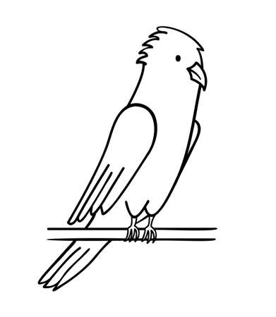 The parrot sits on a stick, disheveled, shaggy. doodle black and white isolated objects on white background.
