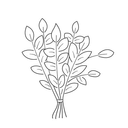 Broom made of tree branches for massage in the steam room.Contour black and white isolated illustration in doodle style on white background.