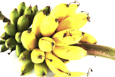bunch up: close up Bunch of ripe bananas on white background