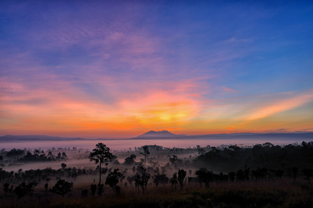 Twilight of Beautiful sunrise   and Foggy clouds in forest at Thung Salaeng Luang National Park,Thailand Stock Photo