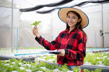 Asian woman farmer using tablet and notebook for inspecting the quality of organic vegetables grown using hydroponics.