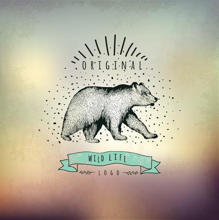 engraving print: Vintage label bear Illustration