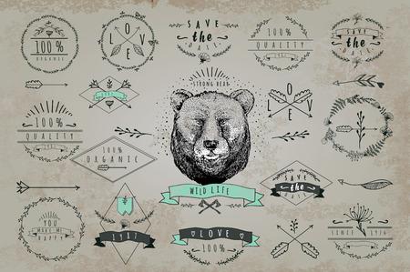 oso: Conjunto de marcos vintage y etiquetas con el oso