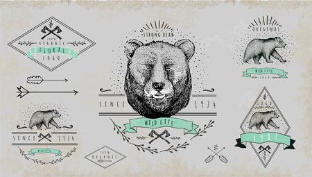 oso: Conjunto de logotipo del oso de la vendimia Vectores