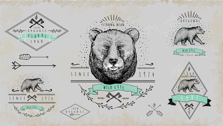 Set of vintage bear logo Illustration