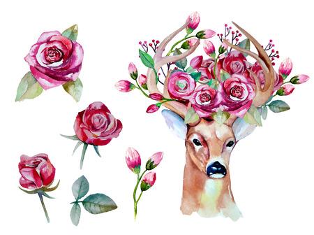 수채화 손으로 사슴 꽃 세트를 그려 일러스트