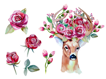 watercolor hand drawn floral set with deer Ilustrace