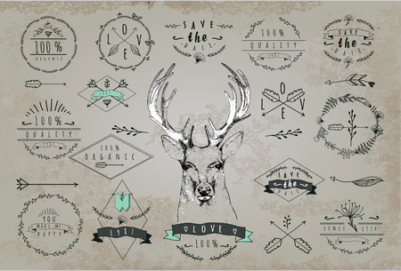 hunting: Set of vintage frames and labels with deer