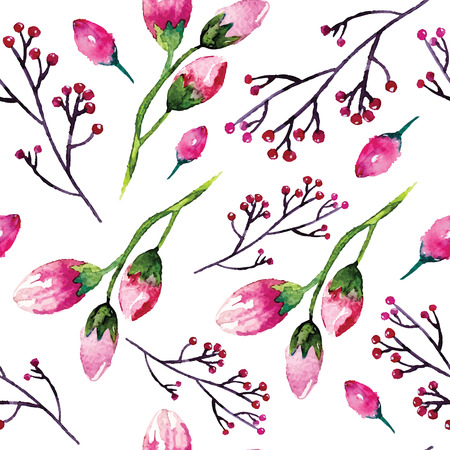 herbarium: Watercolor painting with Rose flowers
