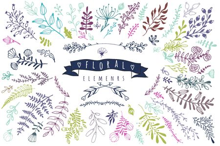 Big collection of different hand drawn floral elements Illustration