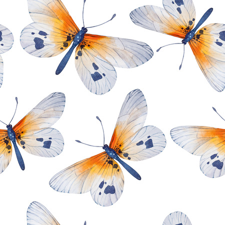 wallpaper floral: Watercolor butterflies, seamless floral vintage pattern background, wallpaper. Hand painted illustration.