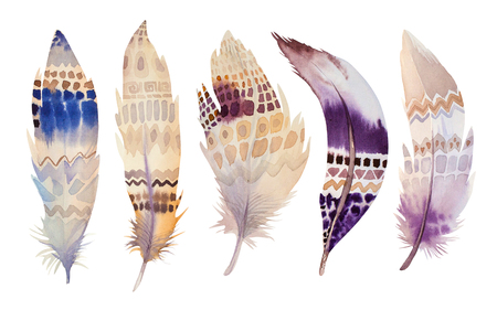 color image: Hand drawn watercolor feather set. illustration isolated on white. Design for T-shirt, invitation, wedding card. Bright colors.