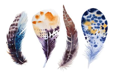 emplume: Conjunto de la mano de la acuarela dibujada pluma. ilustraci�n aislado en blanco. Dise�ar para la camiseta, invitaci�n, invitaci�n de boda. Colores brillantes.