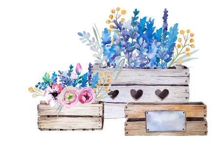 shabby: Watercolor flowers wooden box.Hand-drawn vintage illustration. Provence style with lavender bouquet. Stock Photo