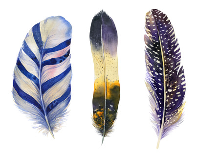bird feathers: Hand drawn watercolor feather set.  Boho style. illustration isolated on white. Design for T-shirt, invitation, wedding card.Rustic Bright colors.