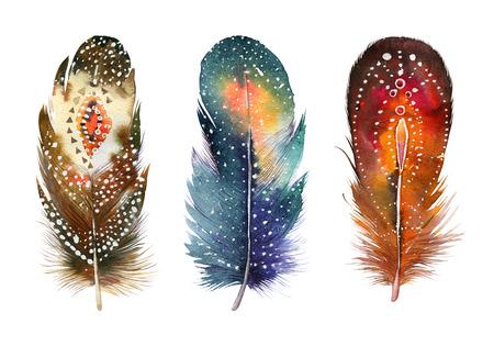 pluma blanca: Conjunto de la mano de la acuarela dibujada pluma. Estilo Boho. ilustraci�n aislado en blanco. Dise�o para la camiseta, invitaci�n, boda card.Rustic colores brillantes.
