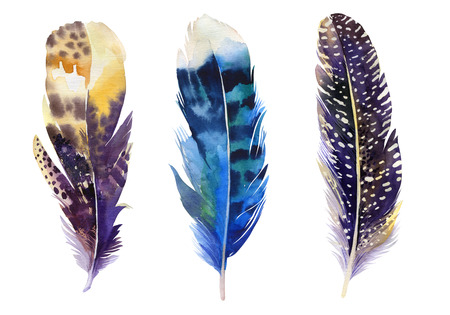 Hand drawn watercolor feather set.  Boho style. illustration isolated on white. Design for T-shirt, invitation, wedding card.Rustic Bright colors.