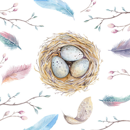 Hand drawn watercolor art bird nest with eggs , easter design.  retro style, watercolour  isolated illustration on white. natural boho style. Main motive nest, quail,  thrush, birth, tree. Stock Photo