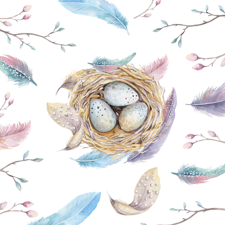 thrush: Hand drawn watercolor art bird nest with eggs , easter design.  retro style. watercolour  isolated  illustration on  white. natural boho style. Main motive nest, quail,  thrush, birth, tree. Stock Photo