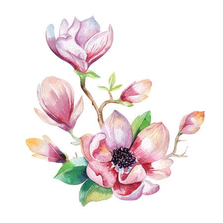 Schilderen Magnolia bloem behang. Hand getekende aquarel bloemen illustratie. Fower decoratieve natuurlijke element. Vintage art watecolour achtergrond. Stockfoto