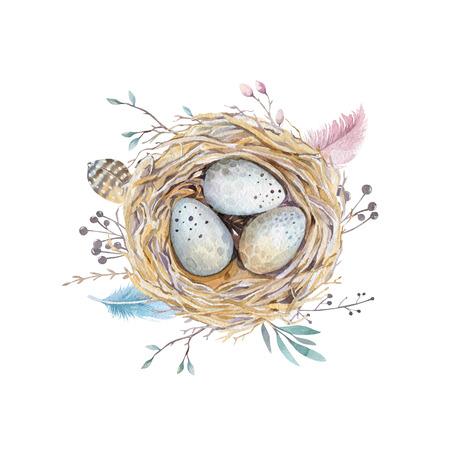 手描き水彩アート鳥巣卵イースター デザイン。 レトロなスタイル。白の分離された水彩イラスト。自由奔放に生きる自然なスタイルです。主な動機