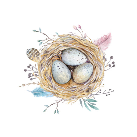 thrush: Hand drawn watercolor art bird nest with eggs , easter design.  retro style. watercolour  isolated  illustration on  white. natural boho style. Main motive: nest, quail,  thrush, birth, tree.