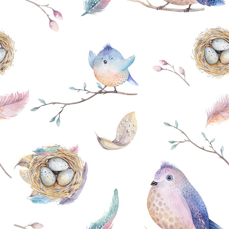 Twigs: Watercolor  spring  rustic pattern with nest, birds, branch,tree twigs and , feathers. Watercolour seamless  hand drawn spring background. Vintage, boho wallpaperfor your  fabric design, wallppaper, weddig card. Stock Photo